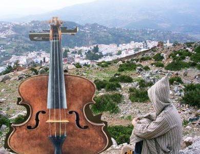 ヴァイオリン独学可能なの?