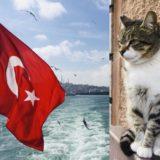 トルコギリシャ、エーゲ海地方の音楽とは?